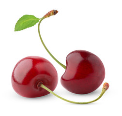 Isolated cherries. Two sweet cherry fruits isolated on white background
