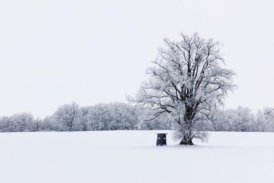 Schneelandschaft in Mecklenburg