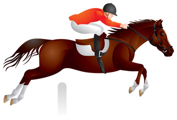 Horse Show jumping vector image