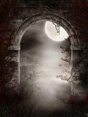 Fototapeta Gotyckie ruiny z cierniami i mgłą obraz