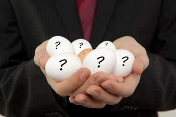 Fragen Eier Dioxin