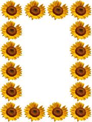 Sonnenblumen Rahmen, Portrait