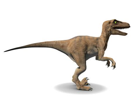 3d Velociraptor dinosaur side view