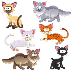 Family of cats. Vector animal characters. Isolated objects