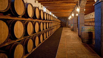 Wine cellar at a Bodega on Lanzarote
