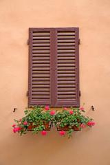 Brown Window in Siena, Tuscany