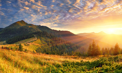 Wall Mural - Summer landscape in the mountains. Sunrise