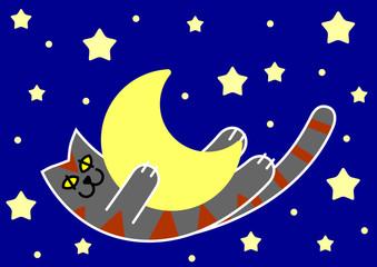 gatto & luna in cielo stellato