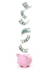 Dollar savings piggy bank