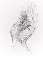 Open hand / realistic sketch (not auto-traced)