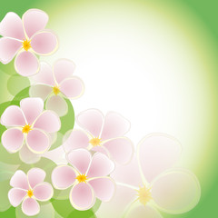 The green background with pink flowers. Vector EPS10