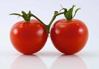 Zwei Tomaten vor weißem Hintergrund