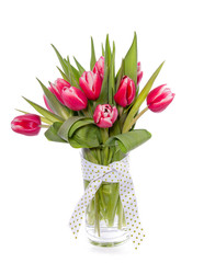 red pink tulips in a transparent glass vase with ribon isolated