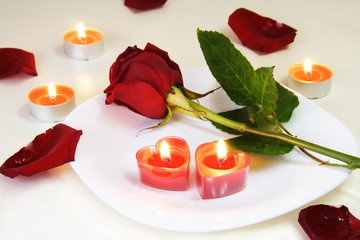 Romantic Inviting Table with Rose and Candles