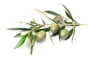 Ramoscello con olive