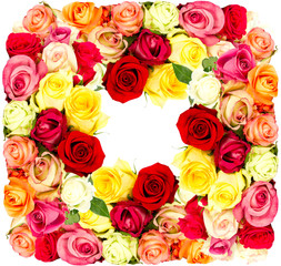 colorful flowers frame, roses
