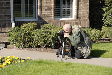 Photographing Yellow Flowers