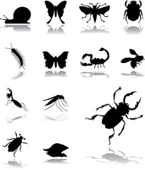 Set icons - 145. Insects