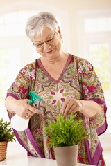 Happy elderly woman watering plant