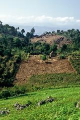 Landscape, Guatemala