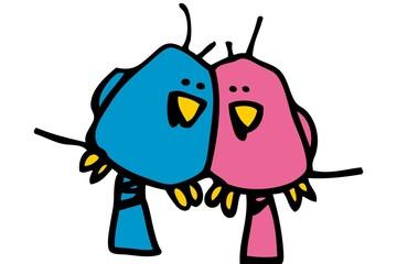 Two lovely birds loving each other