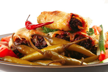 italian cannelloni with mince meat