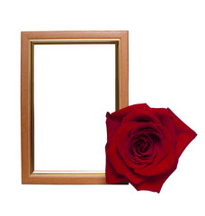 frame with a rose