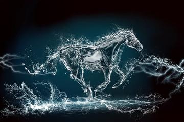 Fototapeta horse water storm
