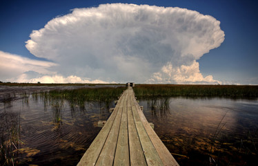 Cloud formations behind waterfowl blind