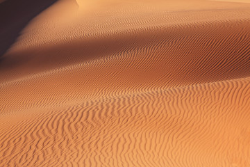 Gentle sand waves sparkle in the sun