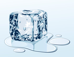 Ice cube on water surface