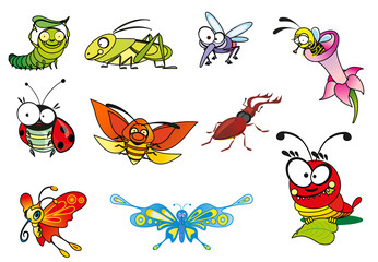 Cartoon illustration - crazy insect.