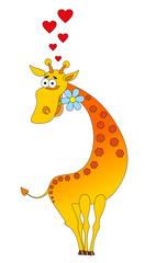 Vector illustration. Valentine love giraffe.