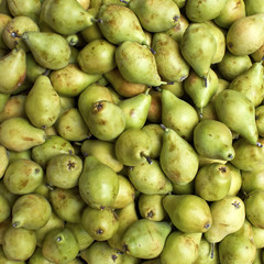 fresh pears, natural background