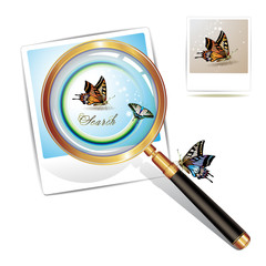 Magnifying glass over a photo with butterfly