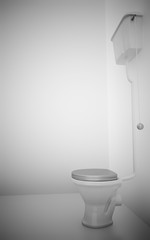 white ceramic toilet in surroundings light walls