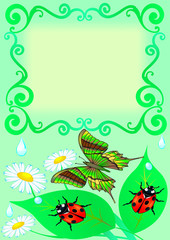 frame with butterfly, colour, sheet, ladybug