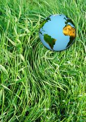 Planète terre et écologie