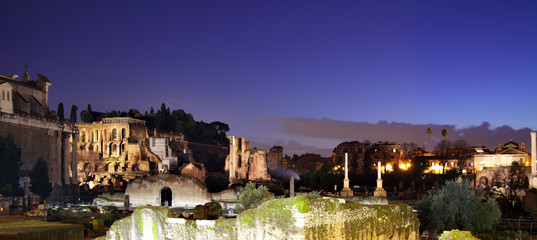 Wall Mural - Ruins of the roman forum
