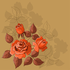 Flower beautiful vector background, roses