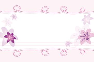 hintergrund lilie