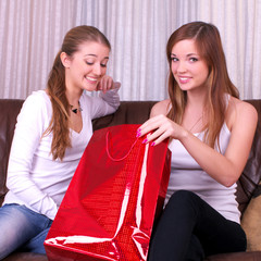 Two delighted women with shopping bag