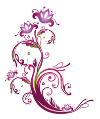 Ranke, flora, Blumen, Blüten, filigran, lila, rosa