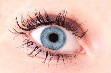 Detail of woman eye