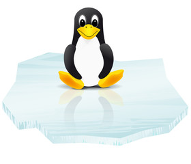 Penguin on ice floe - vector illustration