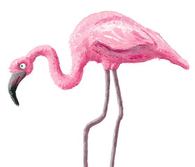 Cute flamingo
