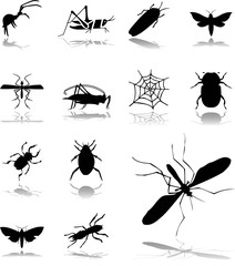 Set icons - 180. Insects