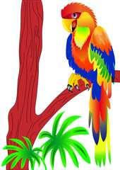 Poster Forest animals parrot sitting on tree
