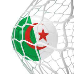 Algerian soccer ball inside the net