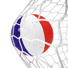 French soccer ball inside the net